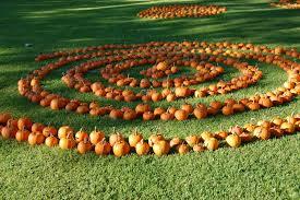 pumpkincropcircles 3